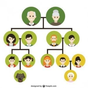 family tree 300x300 - Family and Friends [IELTS Topic]