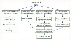 A difficult IELTS flow chart