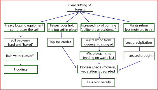 A Difficult Flow Chart – Sample Answer