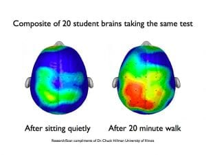 benefits of exercise on brain health