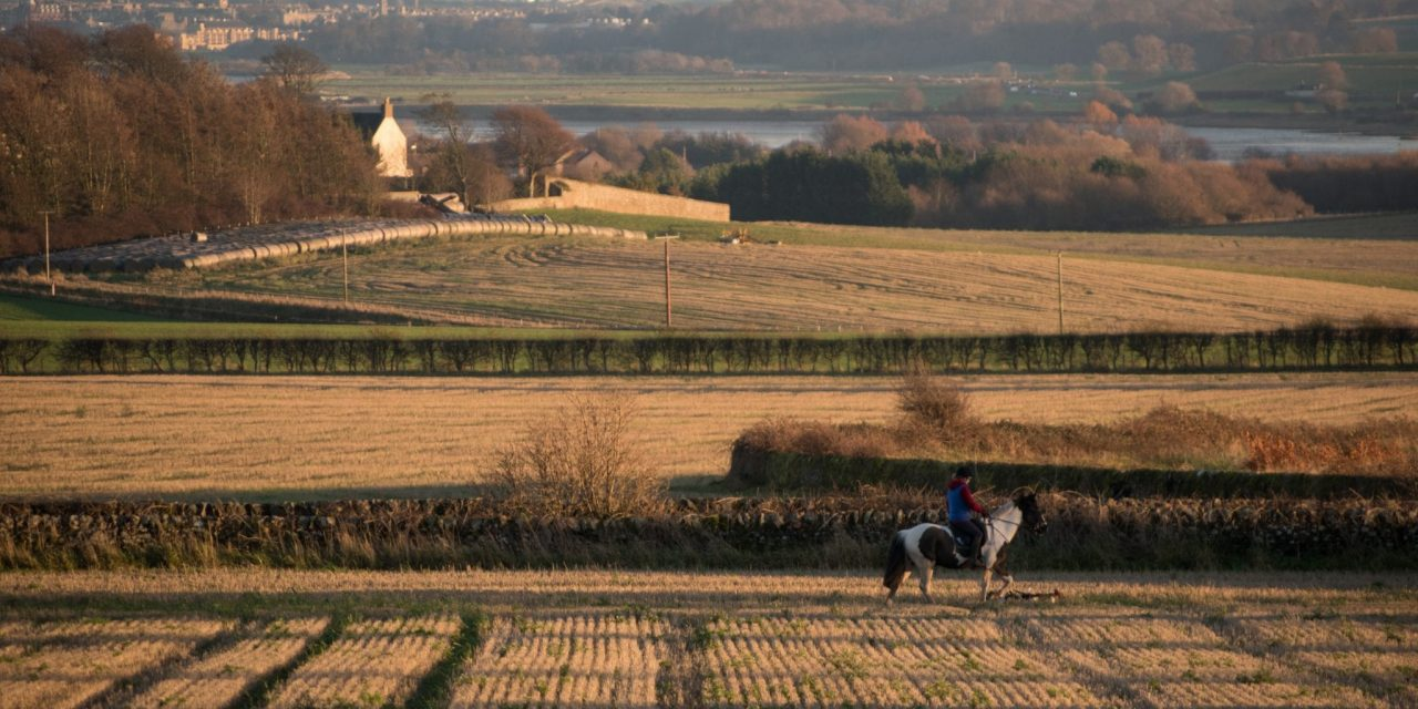 The Countryside [IELTS Topics]
