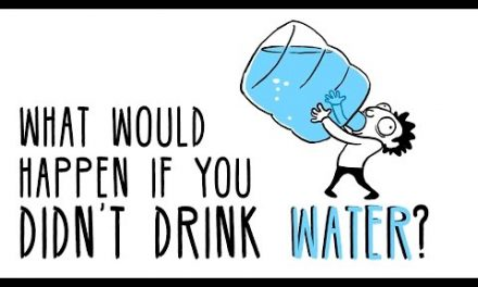 What would happen if you didn't drink water?
