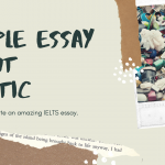 Rubbish: An IELTS Task 2 Sample Essay