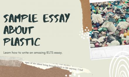 Rubbish: An IELTS Task 2 Sample Essay